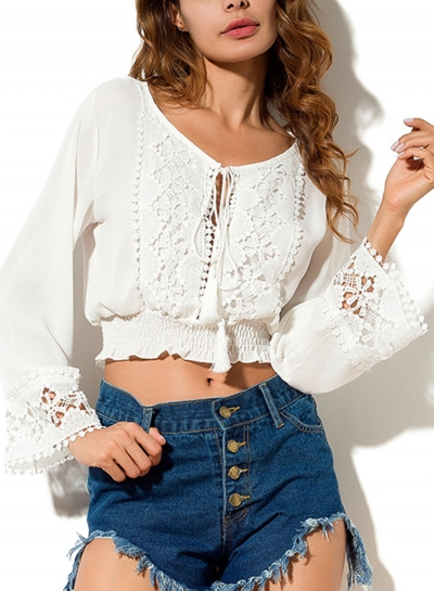 Casual Round Neck Long Sleeve Hollow Out Loose Solid Crop Top